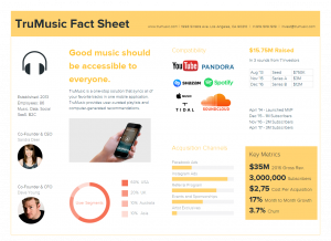 Music Startup Fact Sheet Example